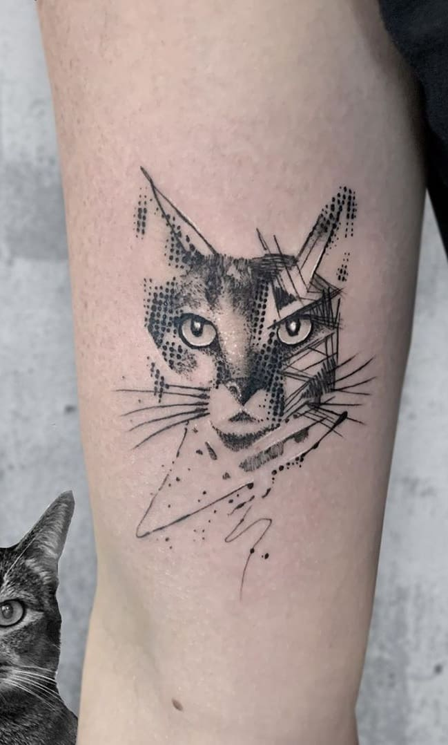 Tatuagem-de-gatos-4