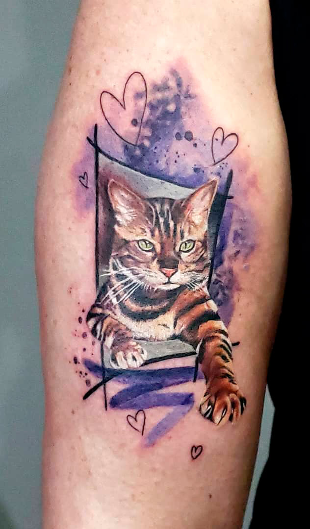 tatuagem-de-gato